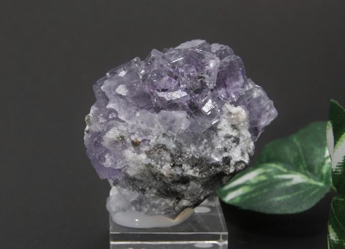 フローライトクラスター(紫)-4