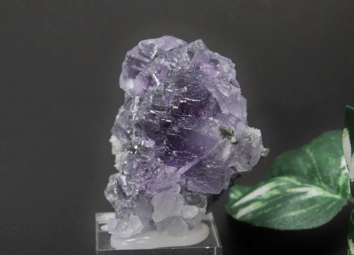 フローライトクラスター(紫)-5