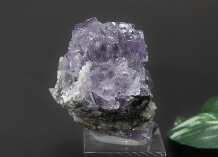 フローライトクラスター(紫)-6