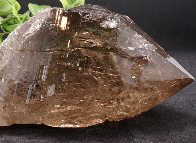 ガネッシュヒマール産水晶 (スモーキーカテドラル) ガウリシャンカール産 1263g -0