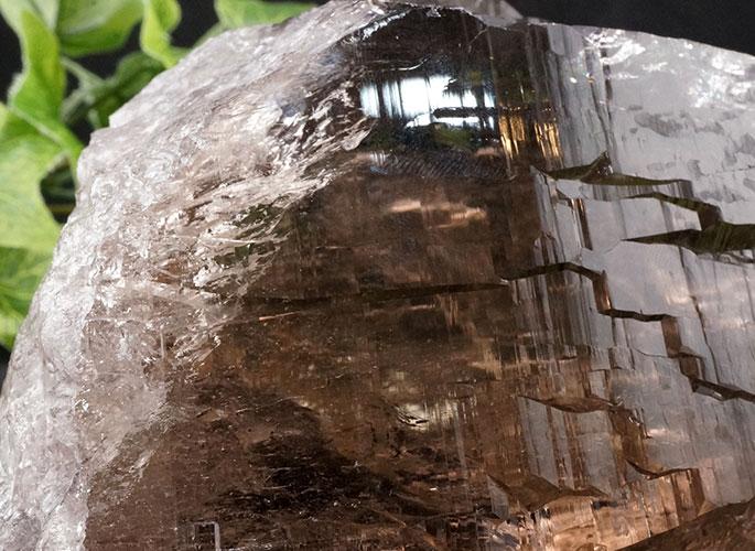 ガネッシュヒマール産水晶 (スモーキーカテドラル) ガウリシャンカール産 1263g -9