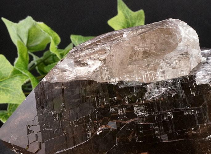 ガネッシュヒマール産水晶 (スモーキーカテドラル) ガウリシャンカール産 1263g -13