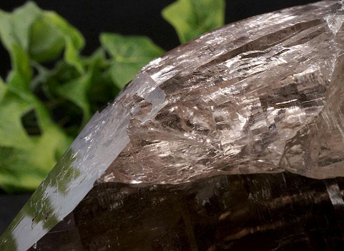 ガネッシュヒマール産水晶 (スモーキーカテドラル) ガウリシャンカール産 1263g -15