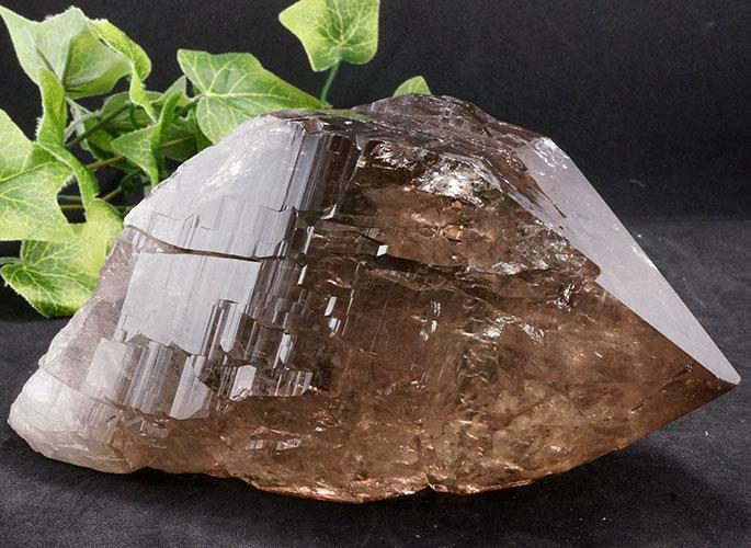 ガネッシュヒマール産水晶 (スモーキーカテドラル) ガウリシャンカール産 1263g -8