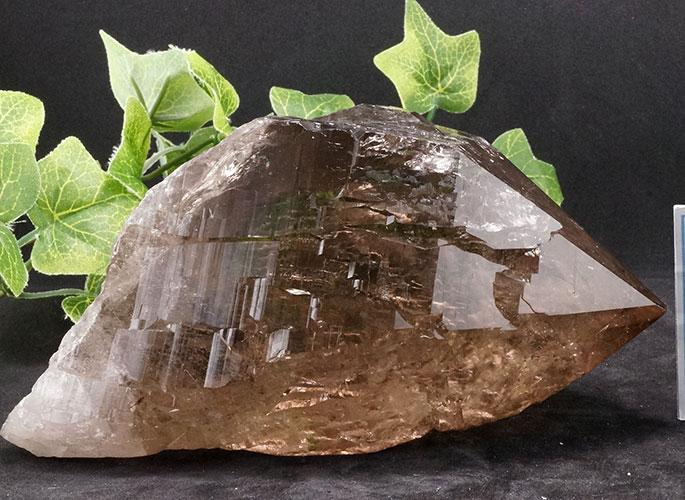 ガネッシュヒマール産水晶 (スモーキーカテドラル) ガウリシャンカール産 1263g